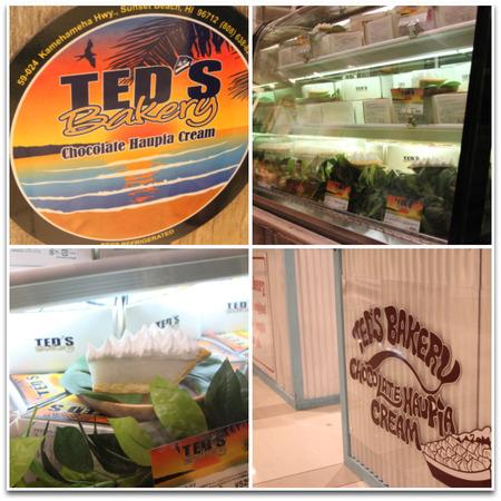 Teds1